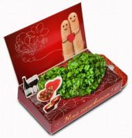 Живая открытка Моей половинке Пальчики Happy Plant - Оптовая продажа товаров для дома - ООО МАРКИК, Екатеринбург