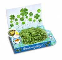 Живая открытка Вырасти удачу Happy Plant - Оптовая продажа товаров для дома - ООО МАРКИК, Екатеринбург