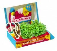 Живая открытка Хорошего настроения №2 Happy Plant - Оптовая продажа товаров для дома - ООО МАРКИК, Екатеринбург