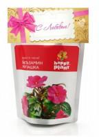 Набор для выращивания в дойпаке Бальзамин милашка Happy Plant - Оптовая продажа товаров для дома - ООО МАРКИК, Екатеринбург