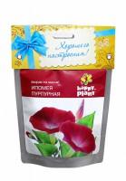 Набор для выращивания в дойпаке Ипомея пурпурная Happy Plant - Оптовая продажа товаров для дома - ООО МАРКИК, Екатеринбург